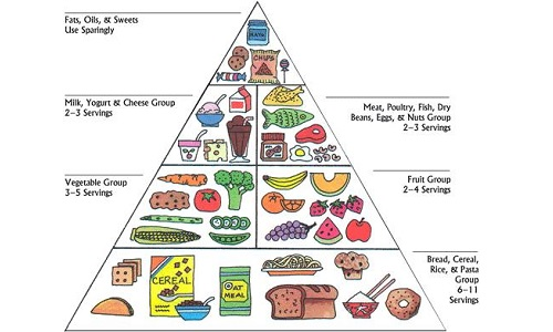 classic-food-pyramid